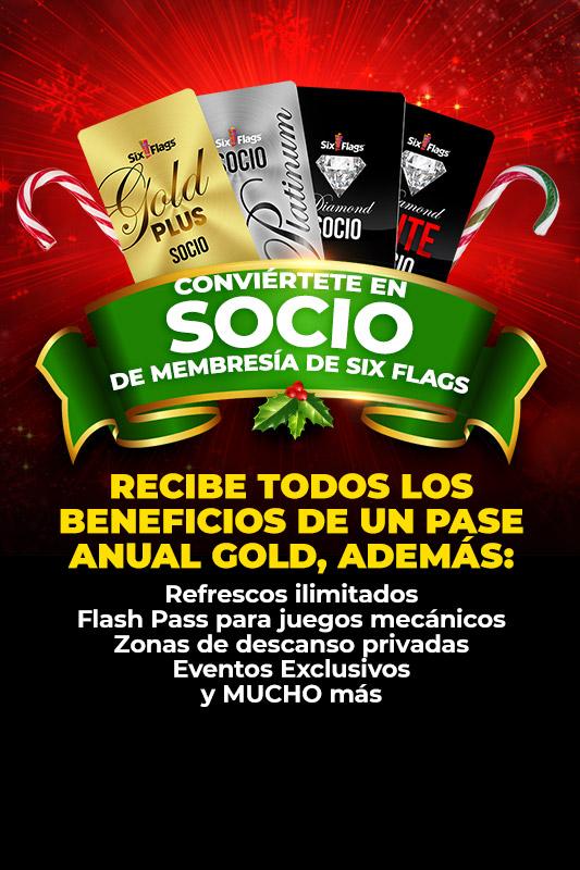 Daily Tickets Six Flags México